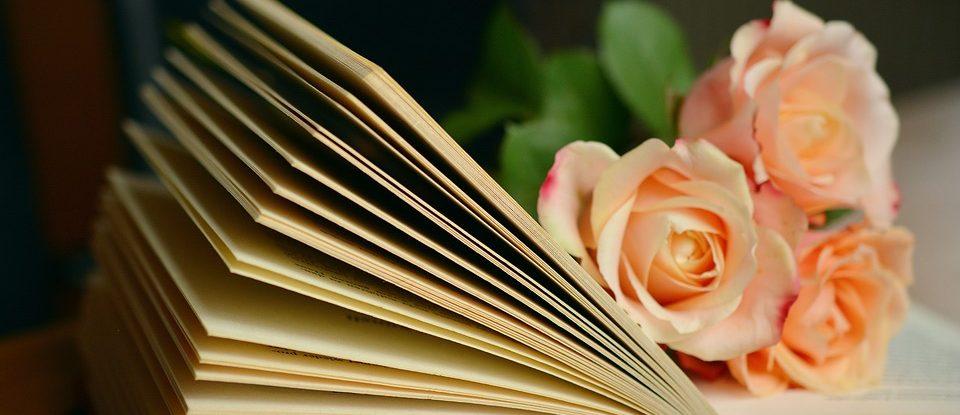 book-1769228_960_720
